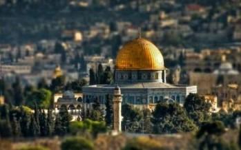 في فلسطين سيّجوا المدائن