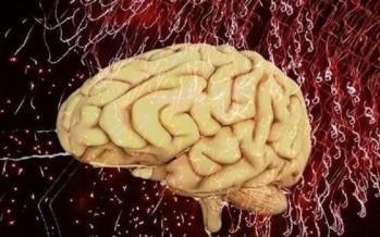 مارِسوا الرياضة دقيقتين يومياً لتحسين الدماغ والذاكرة