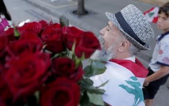 قطاع الأزهار والشتول ينهار: المجد للباذنجان!