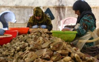اللبنانيّون يعودون إلى «الجذور»: الأكل البيتي «آمن»... و«أوفر»