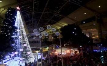 استراليا... شجرة عيد الميلاد تدخل موسوعة غينيس!