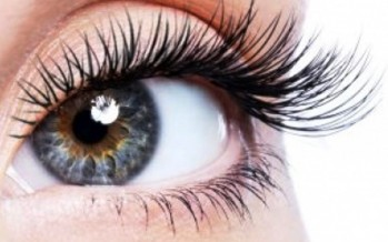 الرموش توفر حماية للعيون من الغبار والاجسام الغريبة