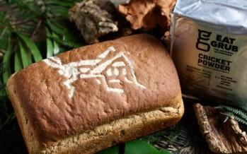 مخبزٌ جديدٌ لصنع الخبز من الصراصير في بريطانيا... ما أبرز فوائده؟