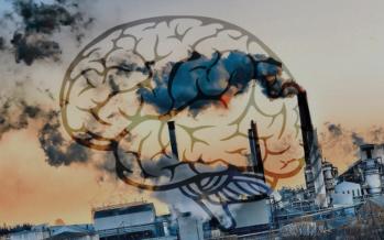 دراسة جديدة: تلوث الهواء يضر بالدماغ ويسبب ضعف الذاكرة لدى كبار السن ...