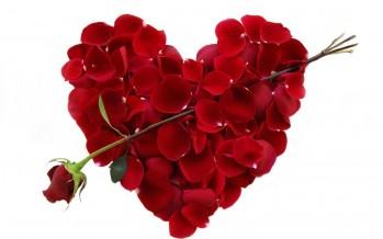عيد الحب.. الأكثر شعبية.. وهداياه تتفاوت أسعارها