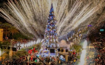 شجرة ميلاد جبيل عنوان للتواصل بين اللبنانيين المقيمين والمغتربين