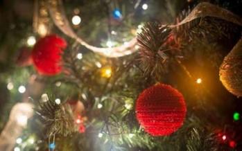 شجرة عيد الميلاد عليها أكثر من نصف مليون مصباح