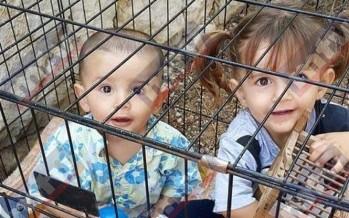 ام سوريا تعيش في لبنان تسجن طفليها في قفص: القصّة الكاملة بالصور...